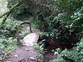 Footbridge near Trefin - geograph.org.uk - 894788.jpg