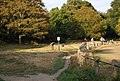 Footpath around the edge of Linden Park Cricket Ground - geograph.org.uk - 1517428.jpg