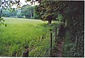Footpath by Underley Copse, Pickhurst. - geograph.org.uk - 187235.jpg