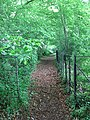 Footpath to Rectory - geograph.org.uk - 828798.jpg