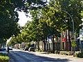Forst (Lausitz) - Cottbuser Strasse - geo.hlipp.de - 39119.jpg