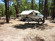 Camp van in forest