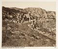 Fotografi från Grekland - Hallwylska museet - 104615.tif