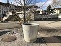 Fountain School Unterstrasse.jpg