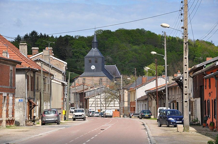Main Street (Grande Rue) in Passavant-en-Argonne (Marne department, Champagne-Ardennes region, France).