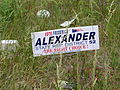 Frederick Alexander for State House.JPG