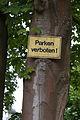 Friedrichshafen - Schild Parken verboten an Baum 001.jpg