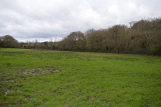 Frieth Meadows - Image: Frieth Meadows 2