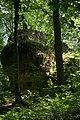Fußweg Felsengarten Sanspareil 04082019 047.jpg