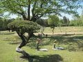 Galilee Memorial Gardens Memphis TN 13.jpg