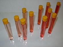 Pruebas de vino rosado como se hace el vino rosado