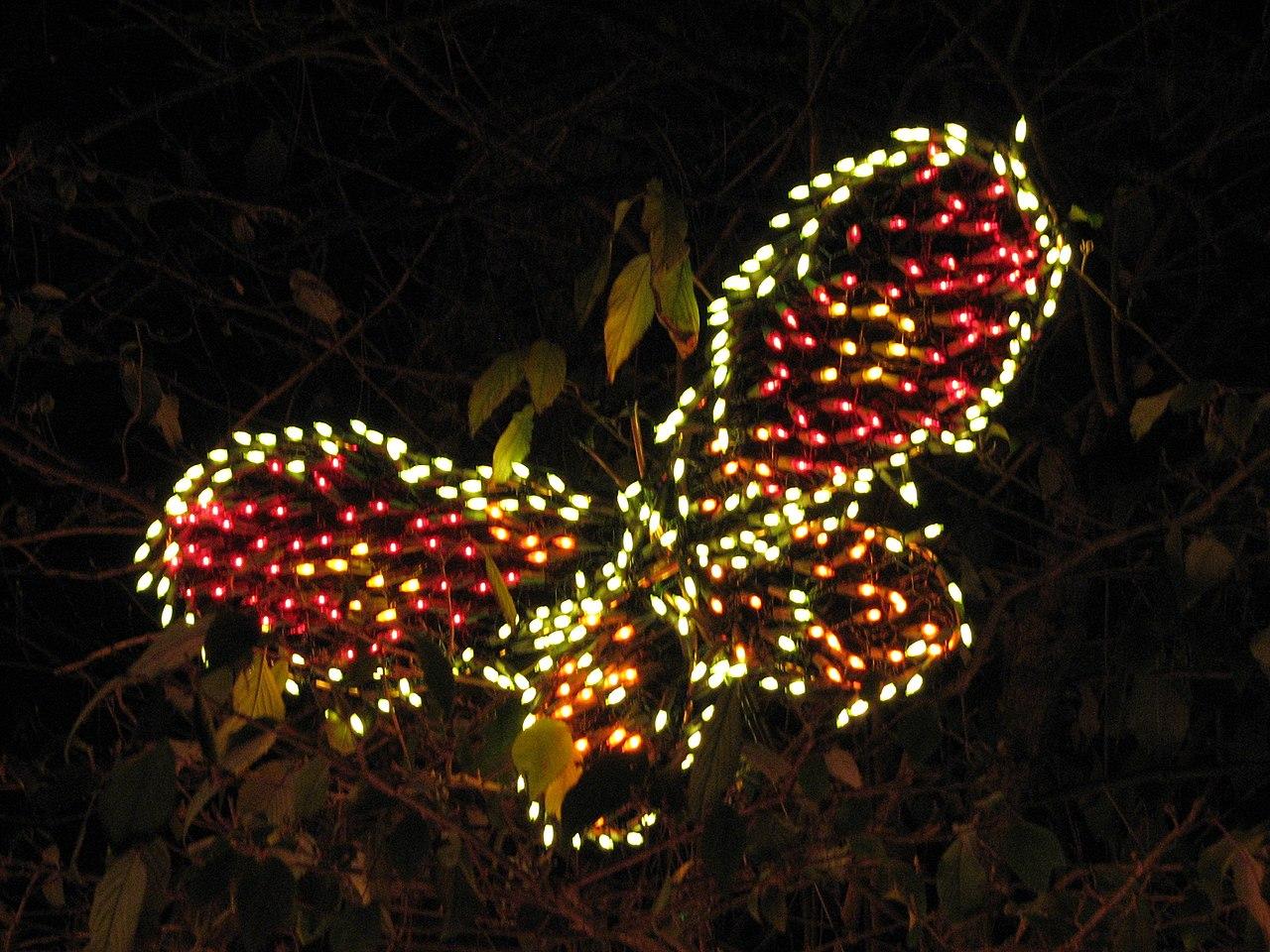 File:Garden d\'Lights 2008 at the Bellevue Botanical Garden, img043 ...