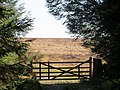 Gate to the High Moor - April 2015 - panoramio.jpg