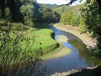 Urft (river) - The Urft near Gemünd in the Urft Reservoir at low water
