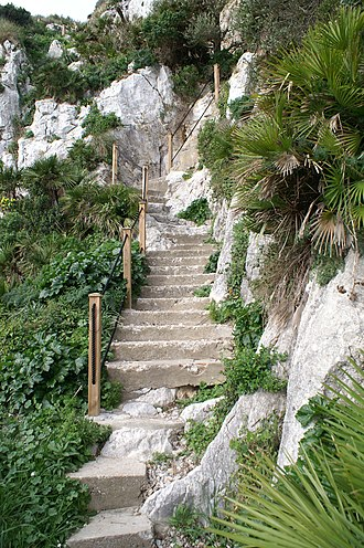 Mediterranean Steps - The steps were refurbished and made safe in 2007