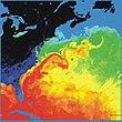 Warmte-opname van de Golfstroom