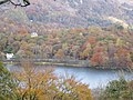 Grasmere in Autumn Colours.jpg