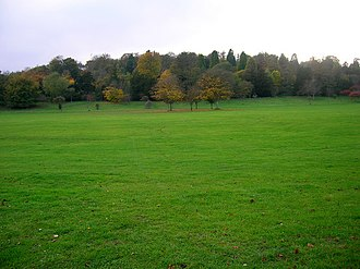 Stanmer Park - Image: Great Wood, Stanmer Park geograph.org.uk 596434
