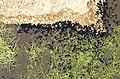Gredos, Cinco Lagunas 1975 08.jpg
