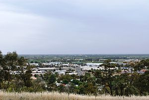 Griffith, New South Wales - Griffith from Scenic Hill lookout