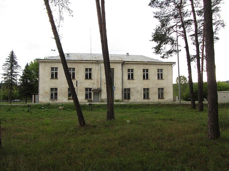 File:Grigiškės, Lithuania - panoramio (100).jpg
