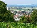 Groß-Umstadt Weinberg.JPG