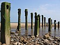 Groynes, Spurn Beach - geograph.org.uk - 944571.jpg
