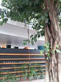HK CWB 銅鑼灣 Causeway Bay 摩頓台 Moreton Terrace flyover 天橋底公共空間的利用 public space usage office building October 2019 SS2 03.jpg