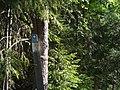 Halvbild av märke för naturreservat på stolpe.jpg