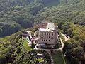 Hambacher Schloss (Luftaufnahme).jpg