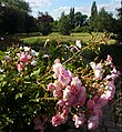 Hamilton Avenue Recreation Ground, SUTTON, Surrey, Greater London (2) - Flickr - tonymonblat.jpg