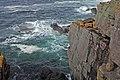 Handa Cliffs Three - panoramio.jpg