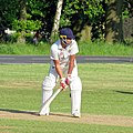 Hatfield Heath CC v. Netteswell CC on Hatfield Heath village green, Essex, England 11.jpg