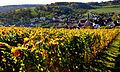 Herbstlicher Spaziergang durch die Becksteiner Weingärten. 11.jpg