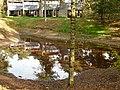Het Vennenbos Landal te Hapert - panoramio (3).jpg