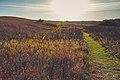 High Peak Hiking Trail - Glacial Lakes State Park, Minnesota (25005303428).jpg