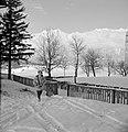Hilde Eschen wandelt in de sneeuw bij Sistrans met op de achtergrond het Karwend, Bestanddeelnr 254-4273.jpg