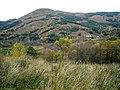 Hillside Below Stron Lochie - geograph.org.uk - 1036824.jpg