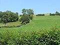 Hillside above Monaughty - geograph.org.uk - 867842.jpg