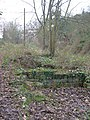 Holme Lacy Station - foundations of station buildings - geograph.org.uk - 634656.jpg