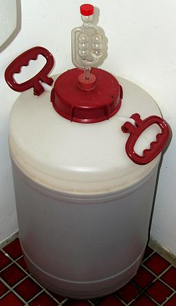 Homebrew Fermenter