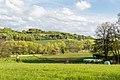 Horn-Bad Meinberg - 2015-05-04 - LSG-4118-0001 (09).jpg