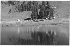 A black and white photo of several horses and a tent near a cluster of trees, in a meadow on the shore of a lake