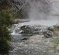 Hot Stream (31112698543).jpg