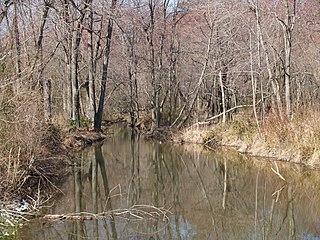 Houston Branch (Marshyhope Creek tributary) Stream in Delaware, USA