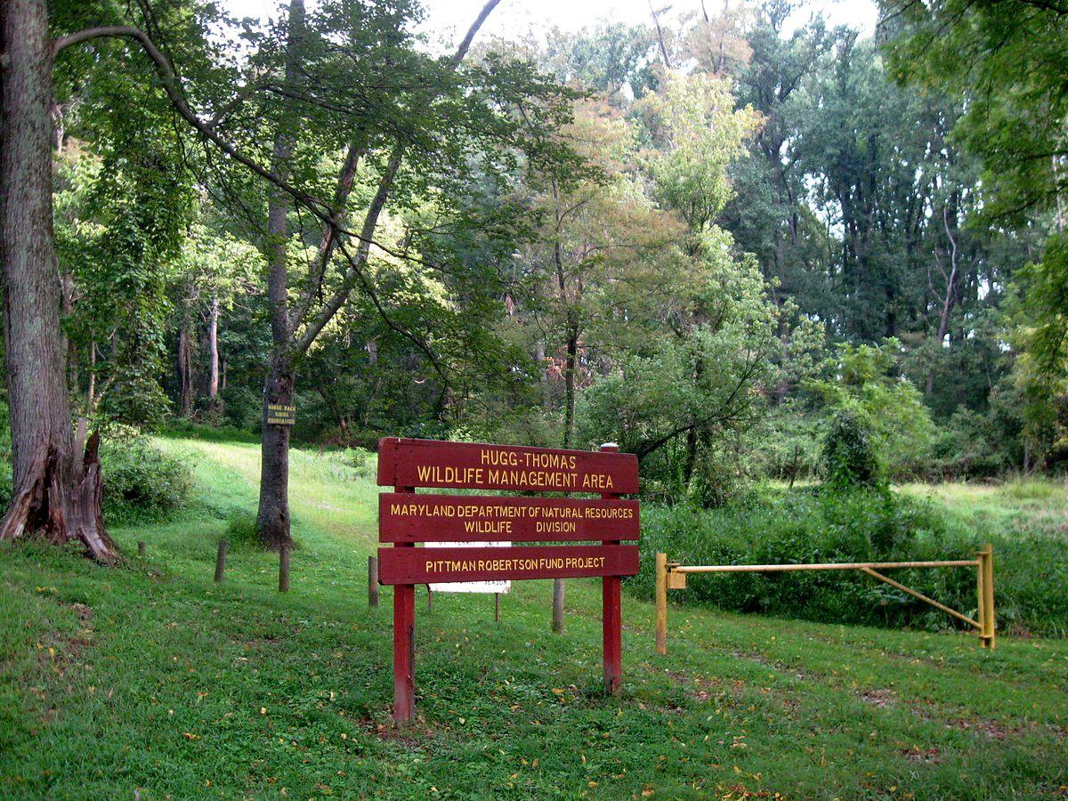 Woods Property Management Orillia