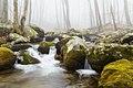 Hughes River Near Corbin Cabin (26383670133).jpg