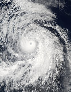 Hurricane Fausto (2002) Category 4 Pacific hurricane in 2002