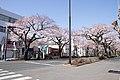 Ibaraki Prefectural Route-293 09.jpg