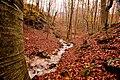 Il monte Polveracchio in autunno inverno, i corsi d'acqua.jpg
